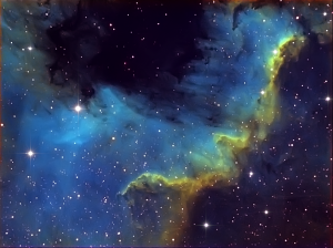 The Cygnus Wall