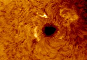sunspot2529dcolour